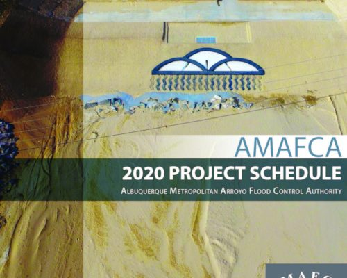 2020 Project Schedule Cover